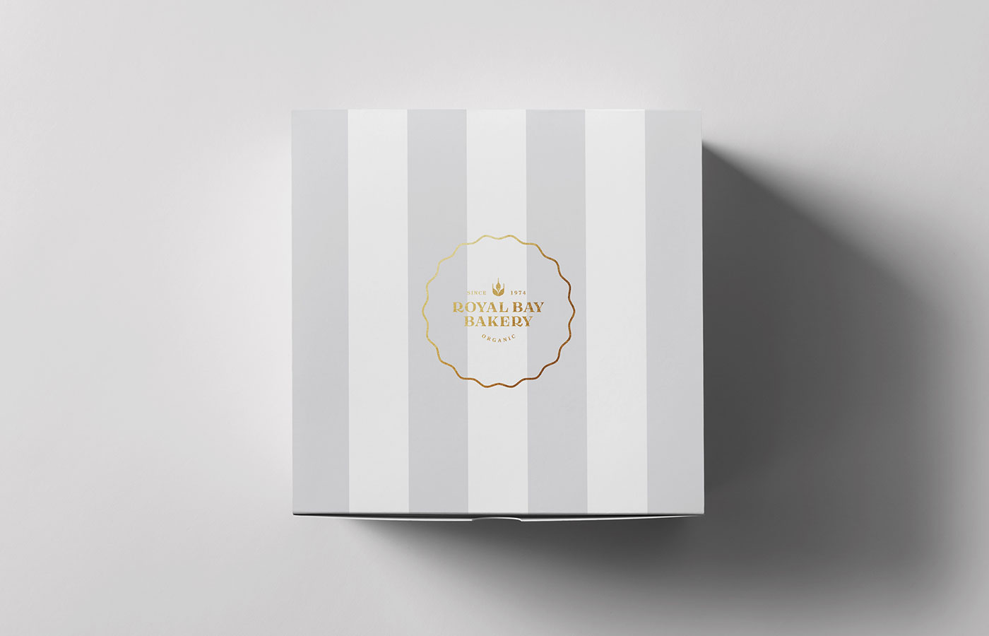 covetdesign_logo-design_branding_package-design_graphic-design_vancouver_work_wide_rbb-box-top